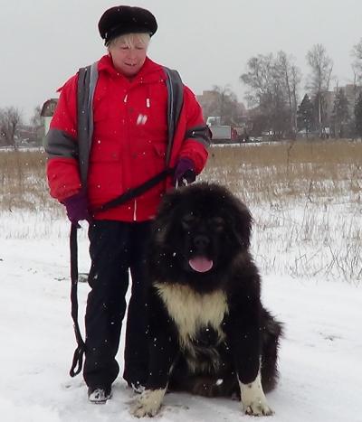 кавказская овчарка, кобель, Первый Легион ДЕМОН Русский Риск, 1 год
