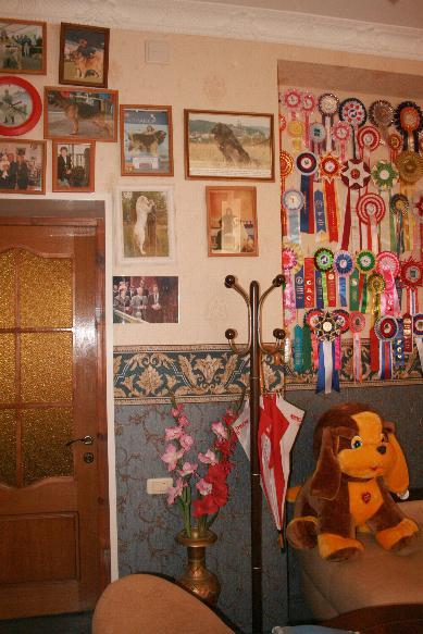 призы кавказских, среднеазиатских, немецких овчарок